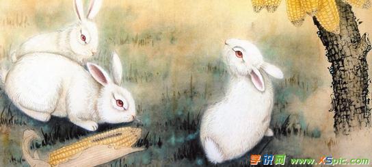 1、属羊与属兔的婚配如何:属羊的和属兔的婚姻怎么样